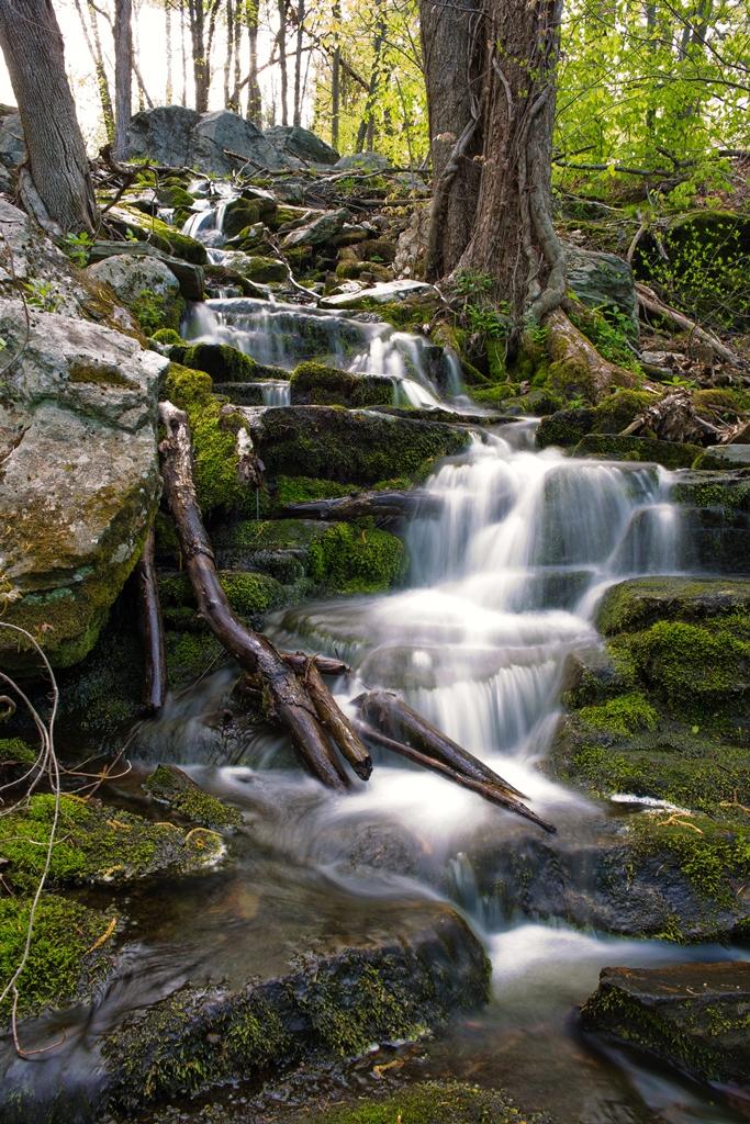 Cascades Park Worcester MassLandlords Paul Nguyen CC BY SA 4.0
