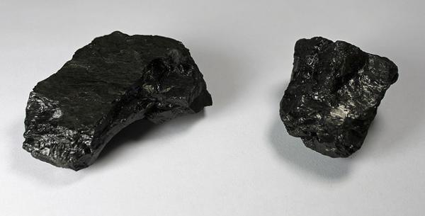 Jeffrey Beall Coal