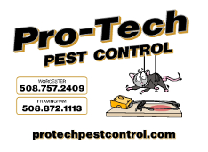 pro-tech pest control worcester and framingham