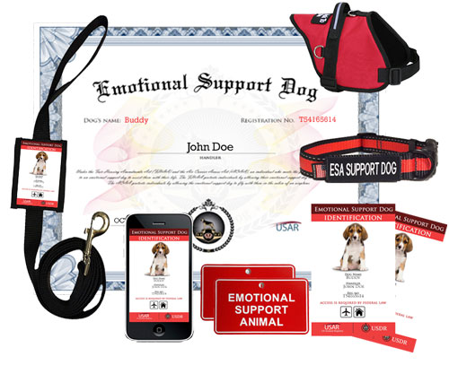 fake emotional support certificates