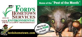fords 2016-09 fleas
